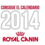 calendario-gratuito-2014