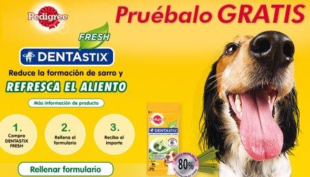 dentastix perros gratis